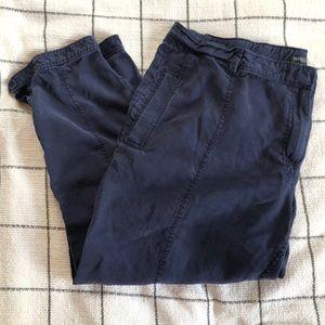 Eileen Fisher navy Tencel ankle pants - 1X